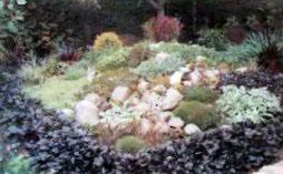 В царстве камней и цветов
