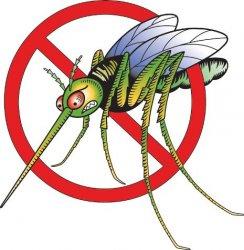 Болотные травы это чистая вода и средство от комаров