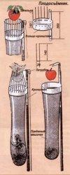 С удилищем -за яблоками