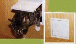 Дверца для кошек своими руками