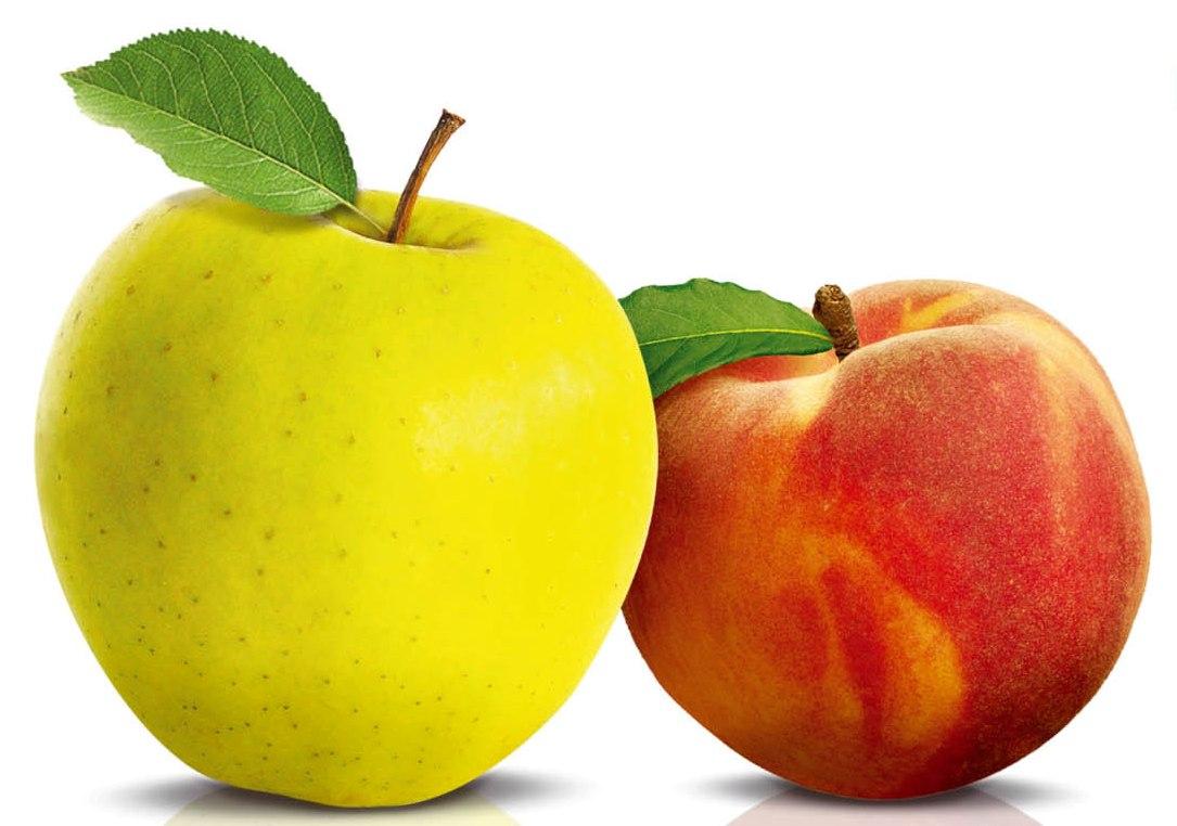 раздельное питание для женщин для похудения