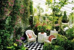 Зимний сад, как элемент ландшафтного дизайна