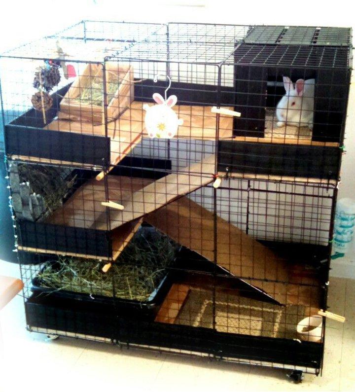 Вольеры для кроликов дома своими руками 81