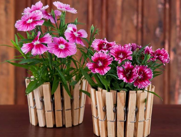 Цветы своими руками в кашпо