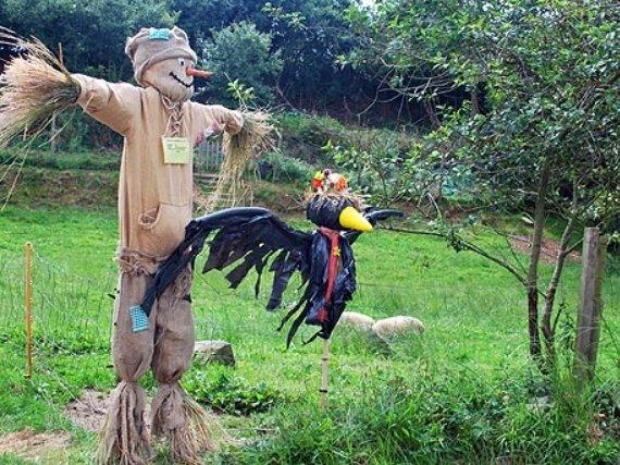 Пугало на огород своими руками от птиц 3