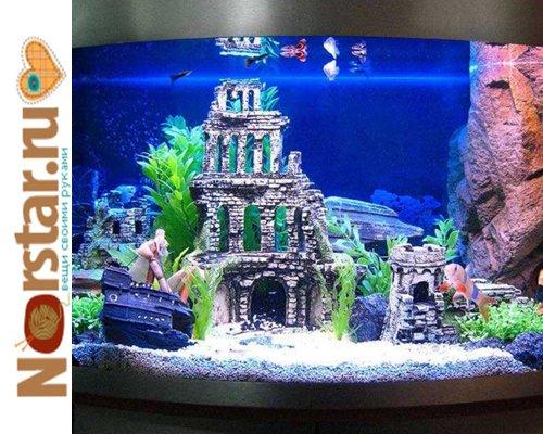 Виды домашних аквариумов