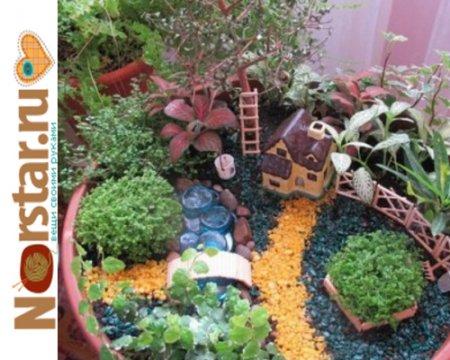 Композиция из кактусов как сделать - Spbgal.ru
