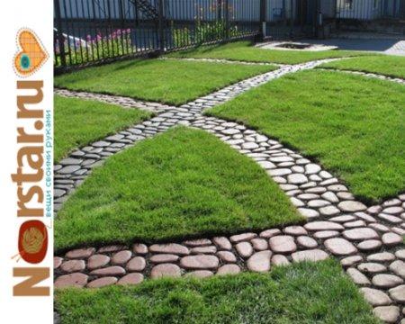 Красивая садовая дорожка на дачном участке
