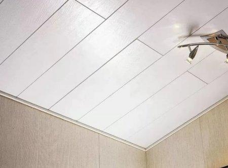 Из чего можно сделать потолок в ванной?