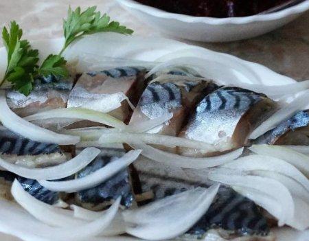 Селёдка - простая рыба с непростыми свойствами