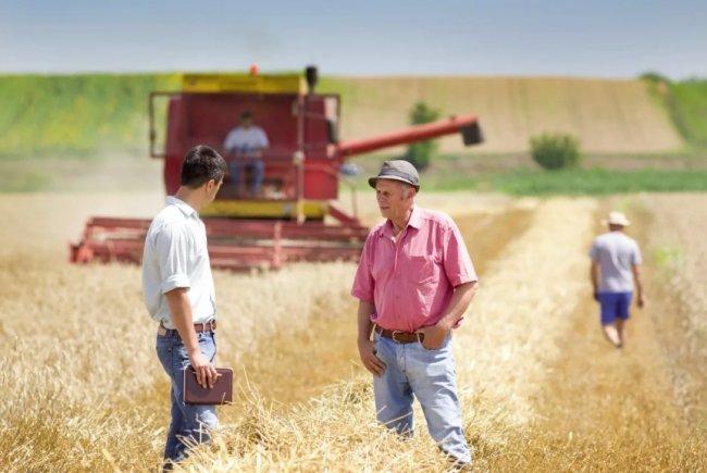 Трудности регистрации фермерского хозяйства